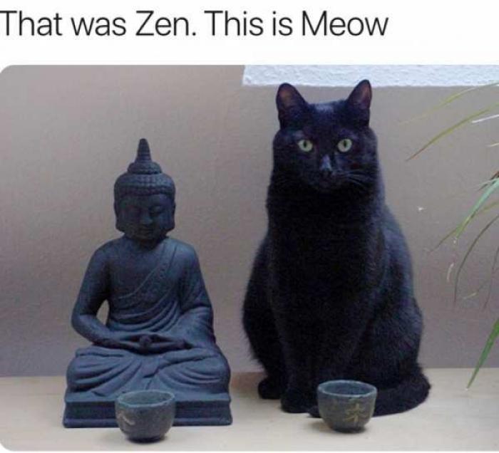 l-4826-that-was-zen